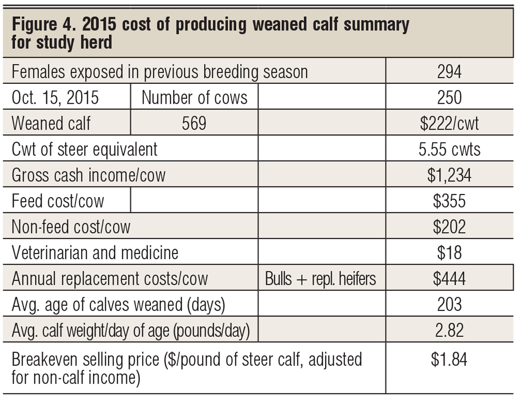 cost of producing cowherd