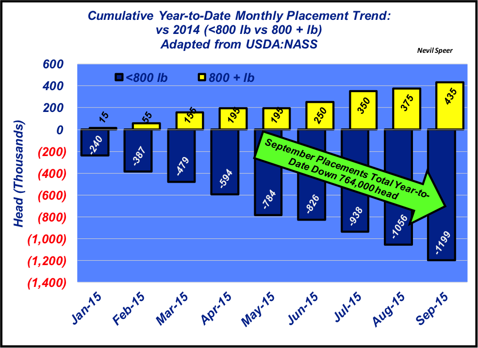 feedyard placement trend