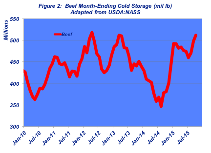 cold storage report