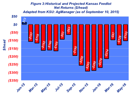 kansas feedlot returns