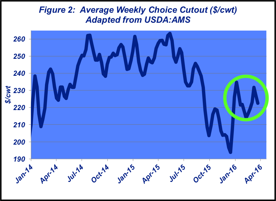 Average Weekly Choice Cutout