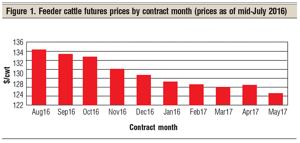 feeder cattle futures prices