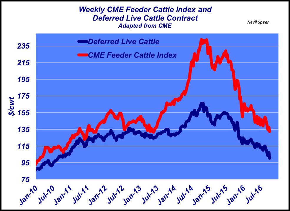 weekly cme feeder cattle trends