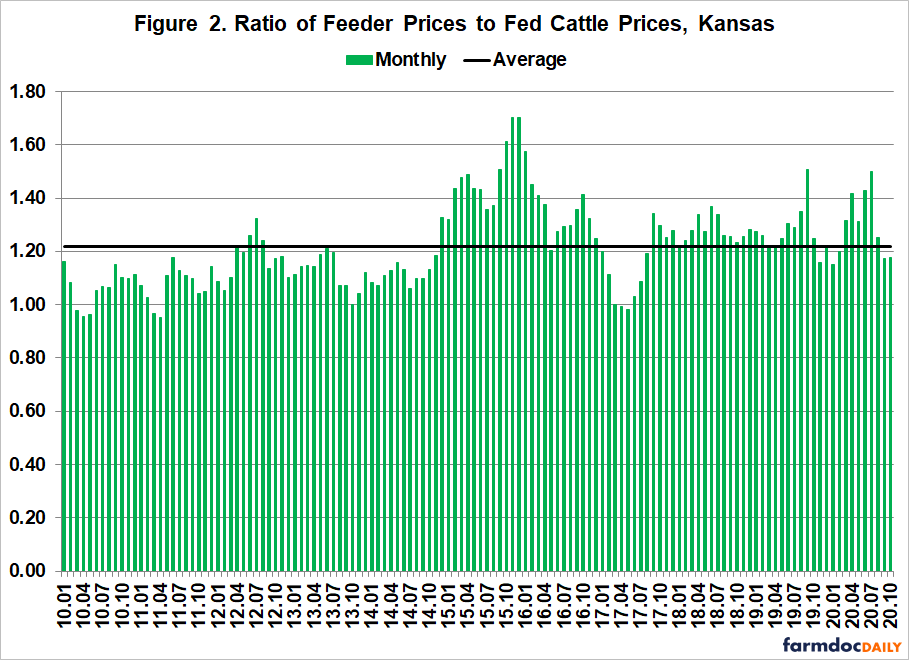1-13-21 fed cattle 2png.png