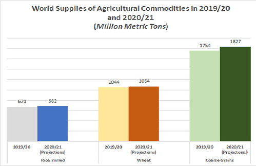 World Supplies Of Agriculture Commodities 2019-20